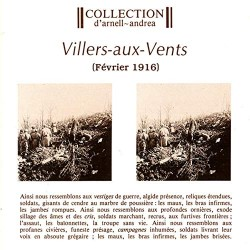 "COLLECTION D'ARNELL ANDREA ""Villers-aux-Vents"" CD"