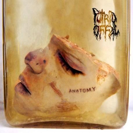 "PUTRID OFFAL ""Anatomy"" CD"