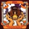 "DIO ""Sacred Heart"" LP"