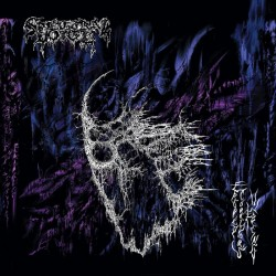 "SPECTRAL VOICE ""Eroded Corridors of Unbeing"" K7"
